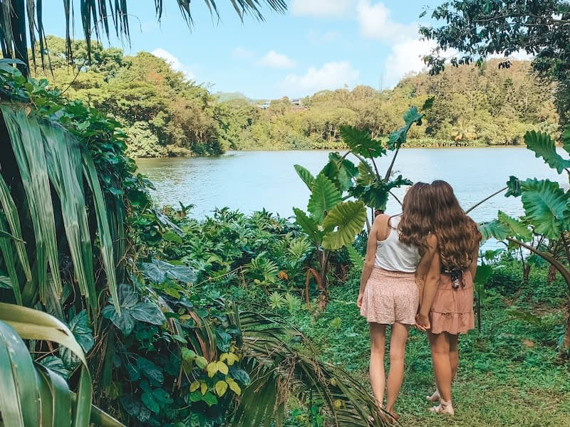 Ho'omaluhia Botanical Gardens - Travel by Brit - Itinerary for Oahu