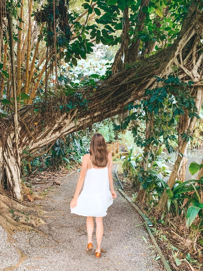 Haleiwa Joe's - Travel by Brit - Itinerary for Oahu