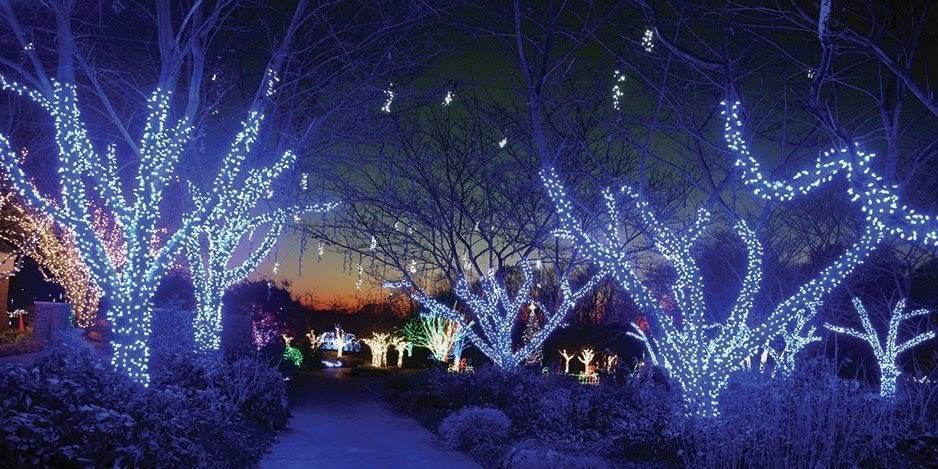 Christmas in Cities - Vienna, VA