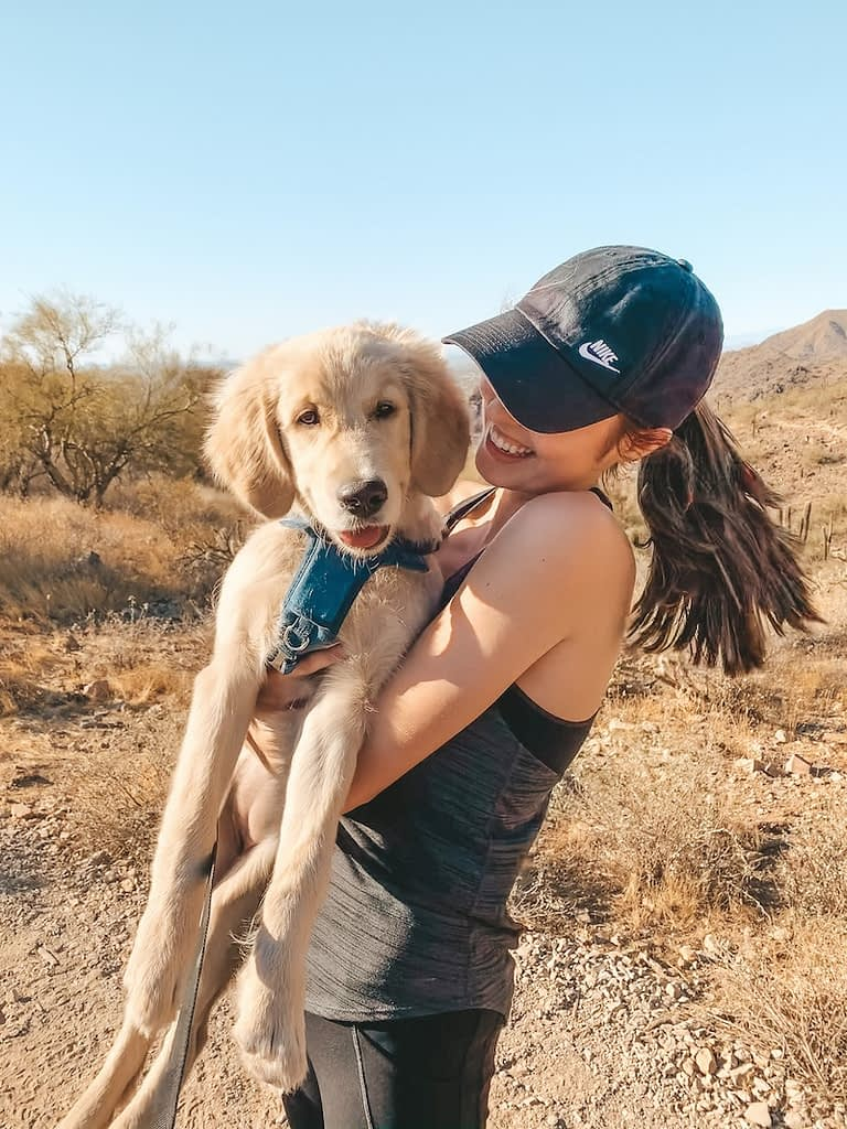 The Best Hikes in Phoenix - Gateway Loop Trail - McDowell Sonoran Preserve
