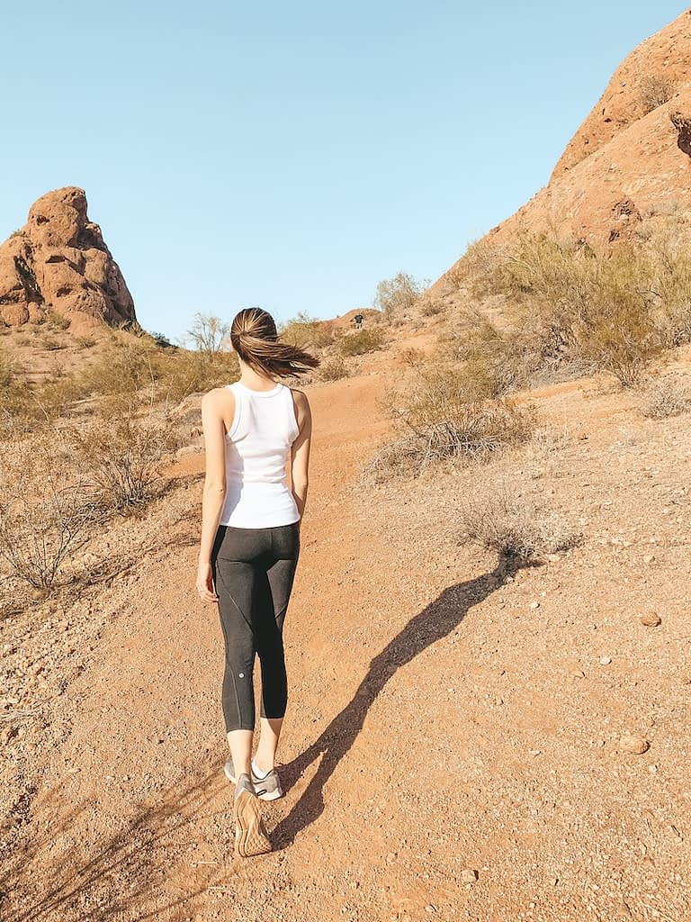 The Best Hikes in Phoenix - Double Butte Loop Trail - McDowell Sonoran Preserve